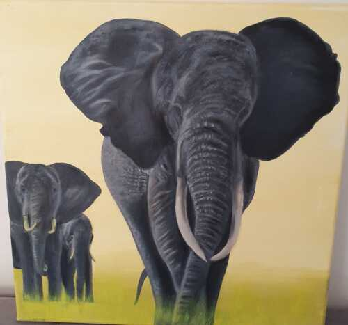Elephant BW